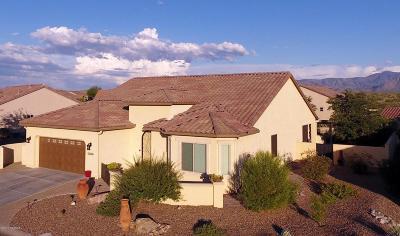 Oracle Single Family Home For Sale: 60365 E Arroyo Vista Drive