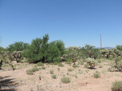 Tucson Residential Lots & Land For Sale: 11030 S Stagecoach Road #225