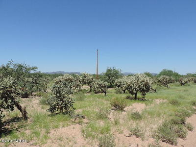 Tucson Residential Lots & Land For Sale: 11000 S Stagecoach Road #224