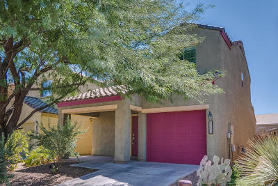 Single Family Home For Sale: 14382 S Camino Vallado