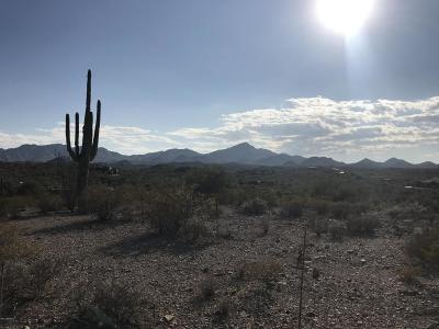 Residential Lots & Land For Sale: 6085 Tucson Mountain Drive #68