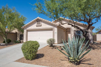 Marana Single Family Home Active Contingent: 5542 W Dove Of Peace Drive