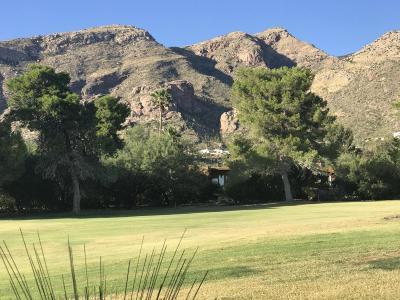 Tucson Townhouse For Sale: 5031 E Calle Brillante
