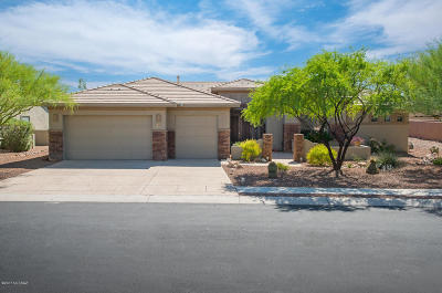 Oro Valley Single Family Home For Sale: 709 W Bright Canyon Drive