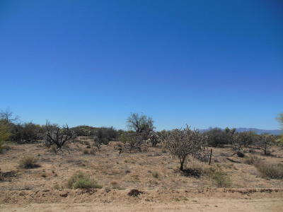 Tucson Residential Lots & Land For Sale: 16025 W Ravinia Avenue #97