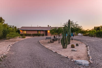 Oro Valley Single Family Home For Sale: 9900 N Placita Papalote