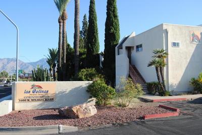 Tucson Condo For Sale: 1600 N Wilmot Road #184