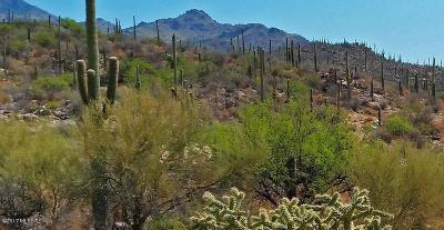 Tucson Residential Lots & Land For Sale: 7300 E Sabino Shadow Place