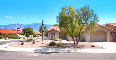 Oro Valley Single Family Home For Sale: 14536 N Rock Springs Lane