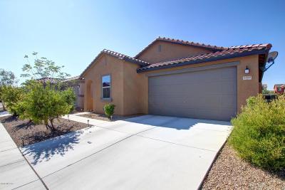 Single Family Home For Sale: 5160 E Arguedas Way
