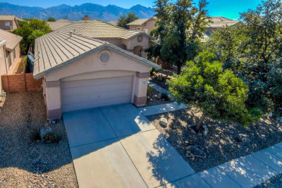 Oro Valley Single Family Home For Sale: 11060 N Eagle Crest Drive