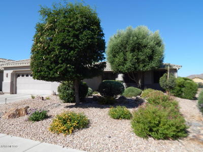 Green Valley Single Family Home For Sale: 949 N Cowboy Canyon Drive