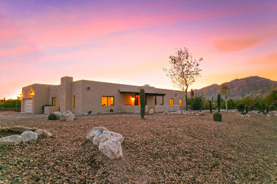 Tucson Single Family Home For Sale: 4855 N Hummingbird Lane
