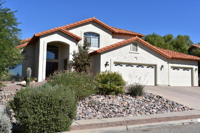 Single Family Home For Sale: 3767 N Sabino Ridge Place