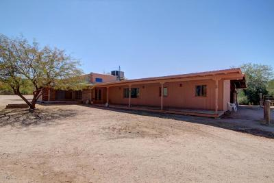 Tucson Single Family Home For Sale: 11553 E Speedway Boulevard