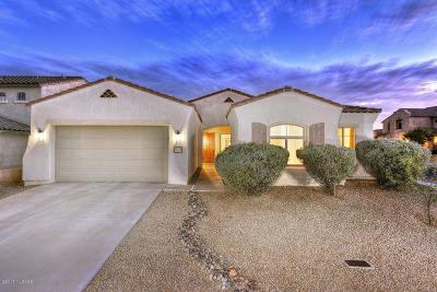 Pima County Single Family Home For Sale: 230 E Paseo Celestial
