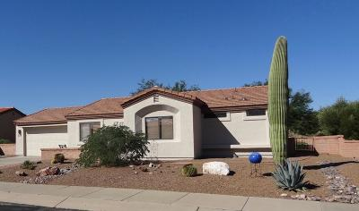 Green Valley Single Family Home Active Contingent: 4804 S Desert Sunset Drive