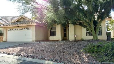 Tucson Single Family Home For Sale: 1707 W Sunridge Drive