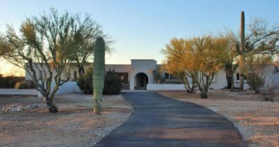 Tucson Single Family Home For Sale: 12825 E Cape Horn Drive