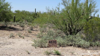 Residential Lots & Land For Sale: 4870 W Sunset Road