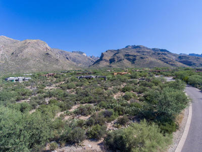 Tucson Residential Lots & Land For Sale: 7791 N Ancient Indian Drive #0244