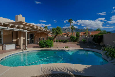 Tucson Single Family Home For Sale: 38195 S Par Court