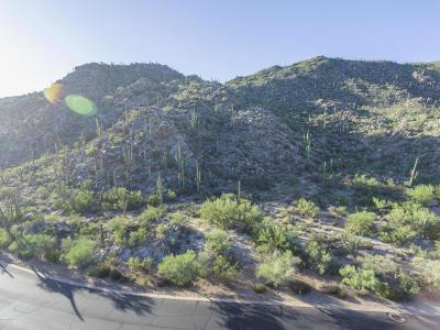 Residential Lots & Land For Sale: 1149 Tortolita Mountain Circle #178