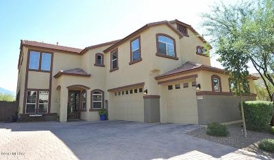 Tucson Single Family Home For Sale: 8478 N Gaetano Loop