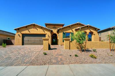 Tucson Single Family Home For Sale: 13671 N Meadowhawk Lane