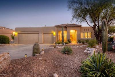 Tucson Single Family Home For Sale: 5042 N Coronado Vistas Place