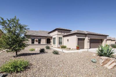 Oracle Single Family Home Active Contingent: 59963 E Hornbill Place