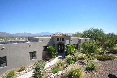 Tucson Single Family Home For Sale: 4980 N Summit Ridge Road