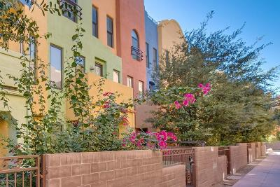 Tucson Townhouse For Sale: 2454 E Emerald Moon Drive