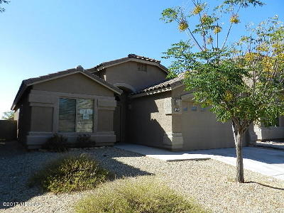 Tucson Single Family Home For Sale: 8464 S Egyptian Drive