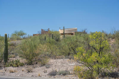 Tucson Single Family Home For Sale: 3158 W Starr Pass Boulevard