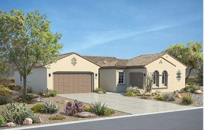 Tucson Single Family Home For Sale: 3558 N Molino Canyon Place N