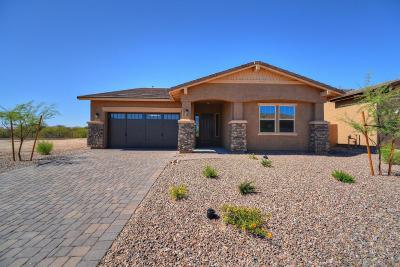 Tucson Single Family Home For Sale: 13241 N Rainbow Cactus Court