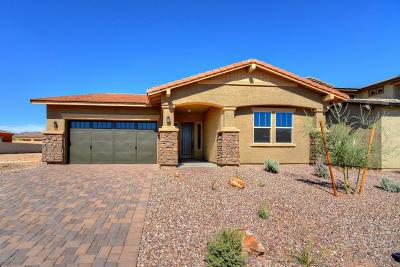 Tucson Single Family Home For Sale: 1080 W Rock Daisy Lane