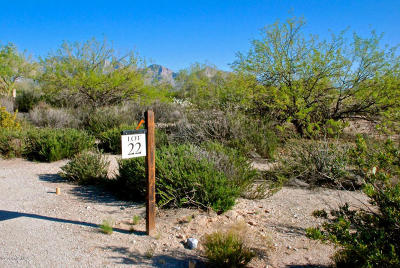 Residential Lots & Land Active Contingent: 14161 N Giant Saguaro Place #22