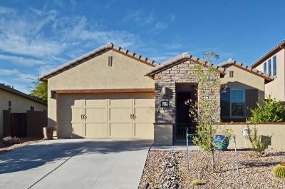 Oro Valley Single Family Home For Sale: 1282 W Versilia Drive