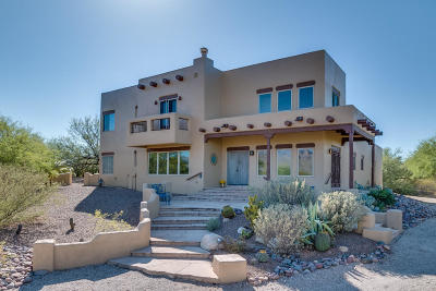 Tucson Single Family Home For Sale: 3391 N Bear Canyon Road