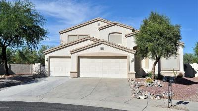 Oro Valley Single Family Home For Sale: 254 W Klinger Canyon Drive
