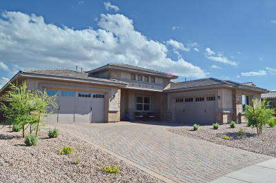 Oro Valley Single Family Home For Sale: 13504 N Silver Cassia Place