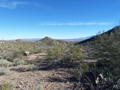 Tucson Residential Lots & Land For Sale: 3785 N Avenida Dos Vista