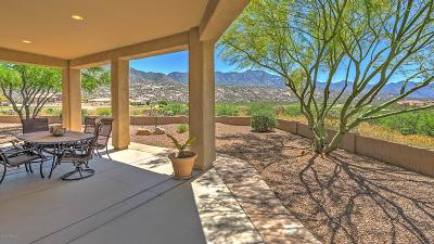 Tucson Single Family Home For Sale: 36604 S Cactus Lane