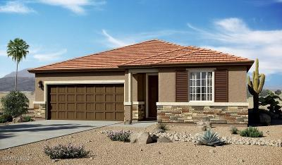 Tucson Single Family Home For Sale: 4922 W Willow Ridge Place
