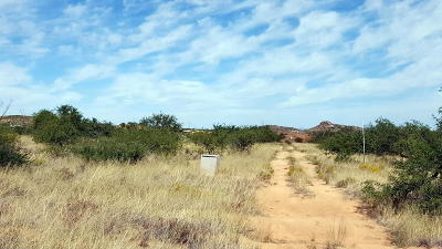Sahuarita Residential Lots & Land For Sale: S Wright Bros Way