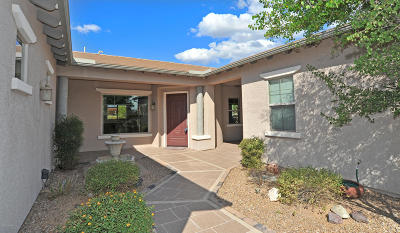 Vail Single Family Home For Sale: 9895 S Camino De La Calinda