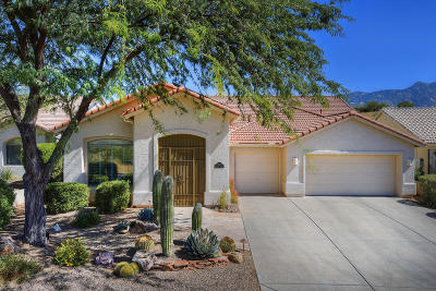 Tucson Single Family Home For Sale: 39035 S Sand Crest Drive