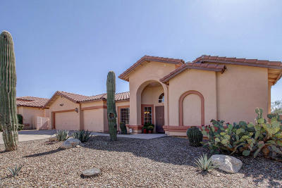 Single Family Home For Sale: 3073 W Canyon Brook Trail